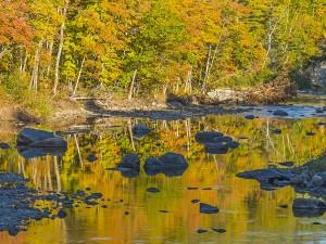 SLf315-Carrabassett yellow reflections-A4493831-working